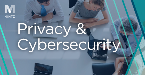 Privacy and Cybersecurity Viewpoint Thumbnail
