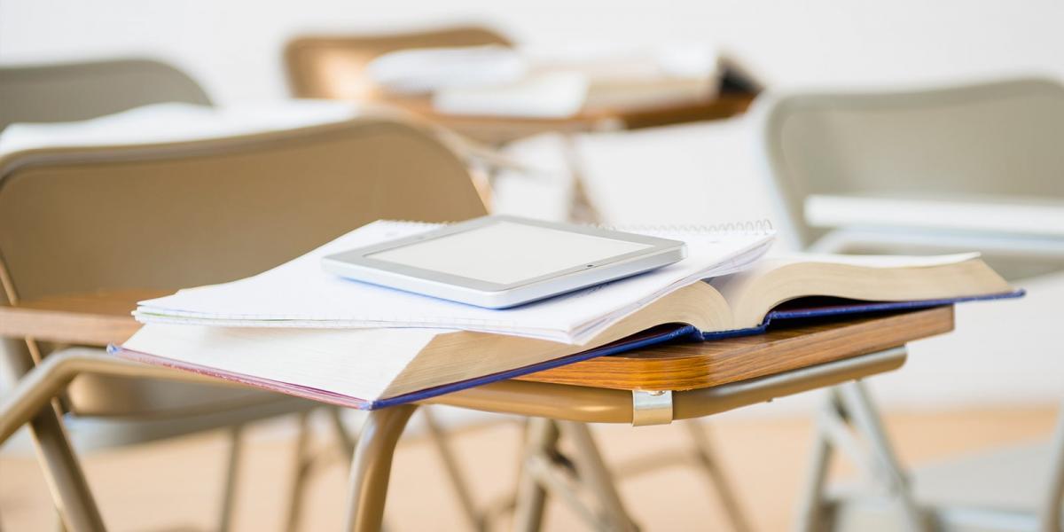 Case Study Hero Dismissal of Class Claims Against Eaglet on School Mintz