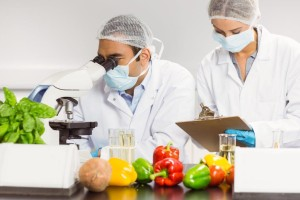 Food scientists at work in the lab