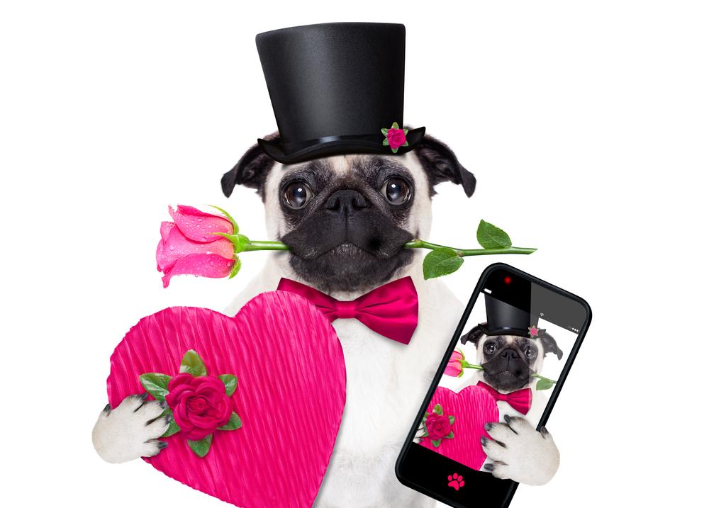 online dating during divorce best online dating mens health